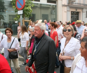 romeria-velez-diario-axarquia-4