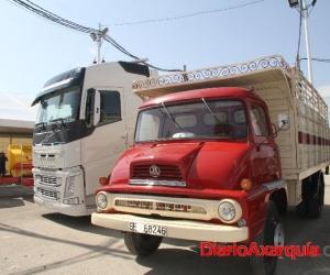 diarioaxarquia-feria-transporte-34