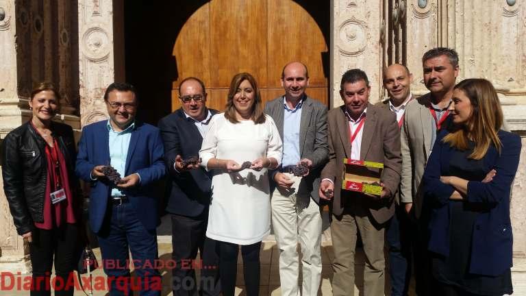 101116-parlamento-andalucia-uva-pasa-2