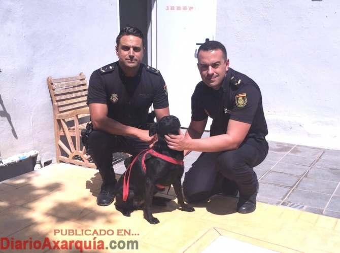 20170614 Fuengirola