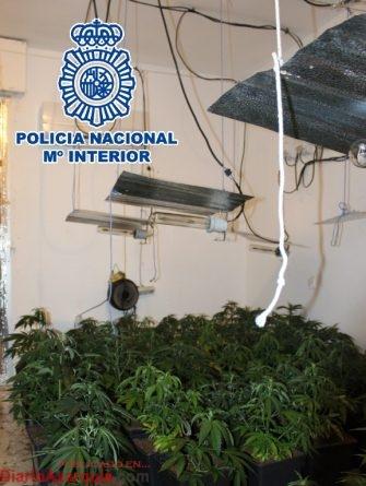 20170620 Invernadero Norte (1)