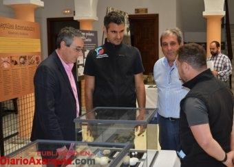 Exposición Reptiles