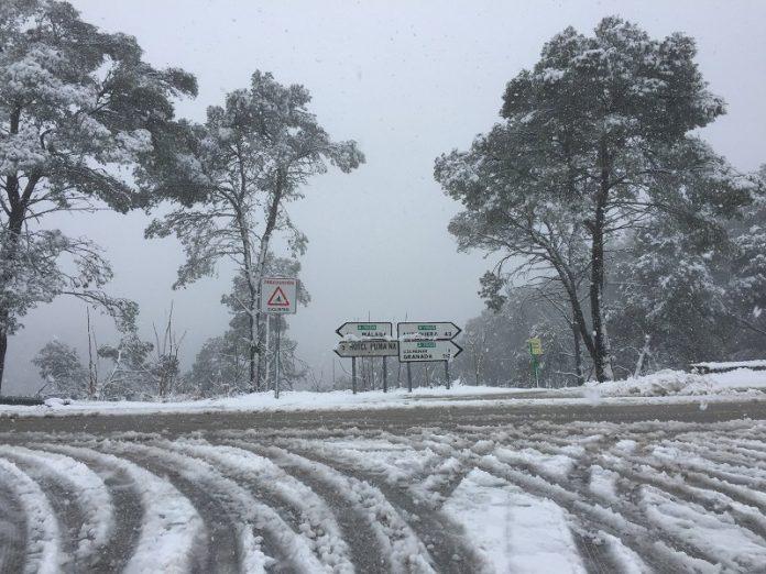 La nieve afecta especialmente a la Serranía de Ronda.