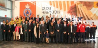 Los condecorados son miembros de las Fuerzas y Cuerpos de Seguridad del Estado, de las Fuerzas Armadas, de la Administración General del Estado, autonómica y local, voluntarios, así como de instituciones y ciudadanos que han colaborado con la Protección Civil española.